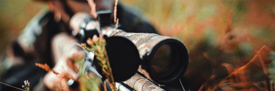 Domanda di Iscrizione albo dei cacciatori di selezione al cinghiale della Regione Molise
